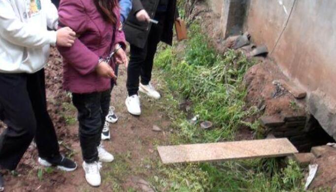 两孙女被奶奶推进粪坑溺亡