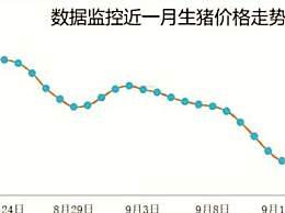 """猪价跌出""""新高度"""" 全国生猪均价即将跌破17.5元一斤"""