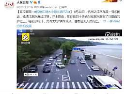 钱塘江潮水冲跑多辆汽车