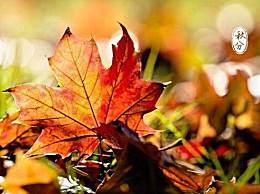 有关秋分的古诗词有哪些