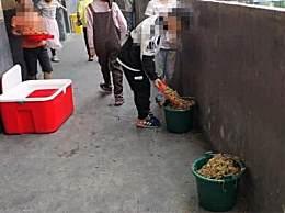 小学生倒营养餐溢出垃圾桶