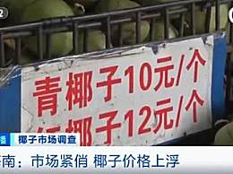 三亚景区椰子卖到20元