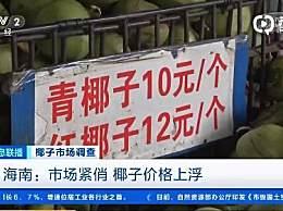 三亚景区椰子卖到20元 今年椰子的市场比往年要紧俏