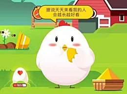 丑小鸭最后变成了哪种鸟类