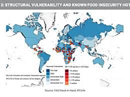全世界的粮食都在涨价!