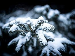 今冬60年来最冷?辟谣 10月底将发布今冬气候预测意见