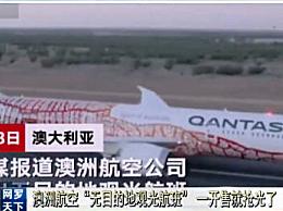 澳航空发出首趟无目的地观光航班