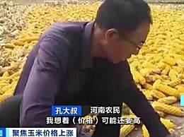 玉米价格每吨涨千元!