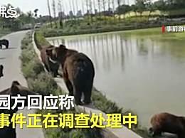 游客讲述上海野生动物园游览经历