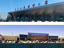 首批4000只蒙古捐赠羊入境现场图