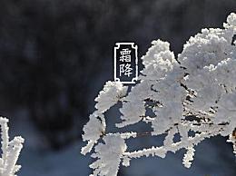 2020霜降是几月几日日几点几分