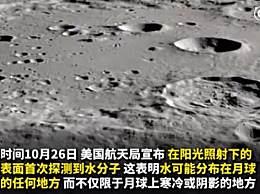 在阳光照射的月球表面发现水