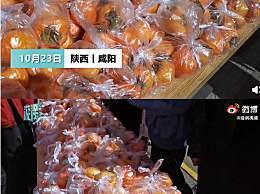 陕西一高校3天摘1000斤柿子送师生