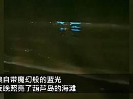 葫芦岛海边现罕见荧光海