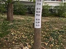 北大流浪猫因抓人被连贴12张告示