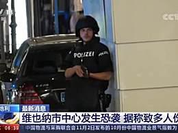 维也纳恐袭:蒙面人端长枪挎短枪