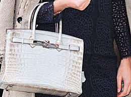 沙特公主30个爱马仕被盗气到住院 被盗物品价值70万美元