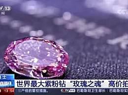 世界最大紫粉钻石卖出1.76亿元