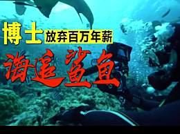 女博士放弃百万年薪下海追鲨鱼