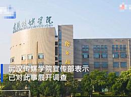 武汉高校学生疑盗清华美术生作品参赛