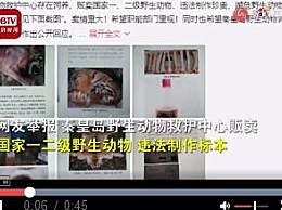 动物保护中心被举报吃虎肉