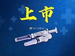 中国新冠病毒疫苗获批上市