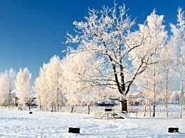 三九天是一年中最冷的时候吗