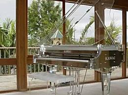 世界上最贵的钢琴多少钱?售价300万