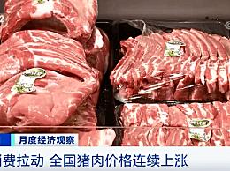 春节能吃到便宜猪肉吗