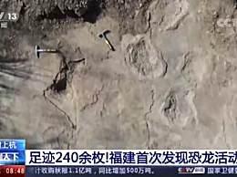 福建发现240余枚恐龙足迹