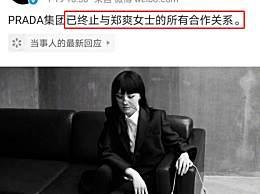 曝郑爽因代孕风波损失2 亿