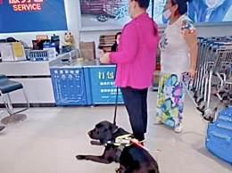 海南一超市阻拦导盲犬入内