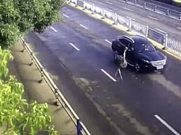 鸵鸟趁主人不注意逃上街头狂奔