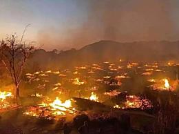 中国最后一个原始部落被烧毁背后什么原因