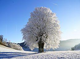山西发布最高级别暴雪预警