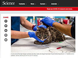 美法首次在猫狗身上发现新冠变异毒株