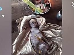 印度一山羊宝宝长出人脸 当地村民认为它是祖先重生
