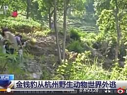杭州野生动物世界主要负责人已被控制