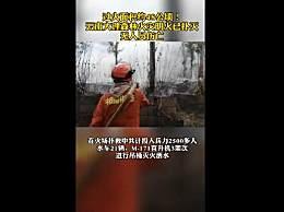 云南大理发生森林火灾近千人参与扑救