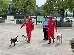 杭州野生动物园三只出逃金钱豹追回一只