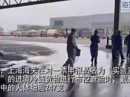 上海海关截获人体细胞247支
