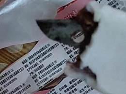 小孩从雪糕中吃出4厘米刀片