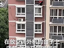 男子无防护从6楼窗户爬出浇花